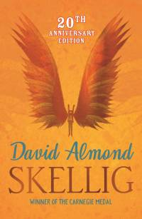 20th anniversary cover for Skellig, figure with large wings